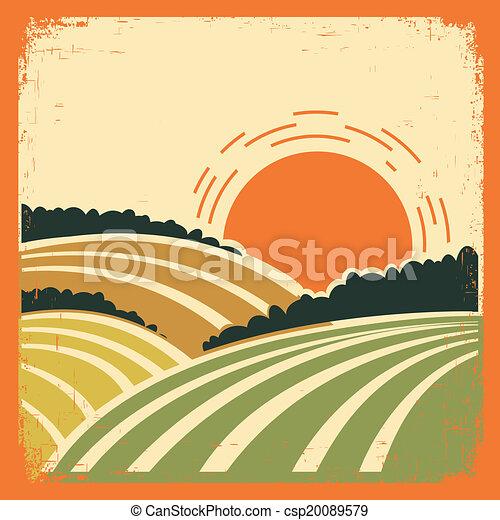 paesaggio, vecchio, manifesto, campi - csp20089579