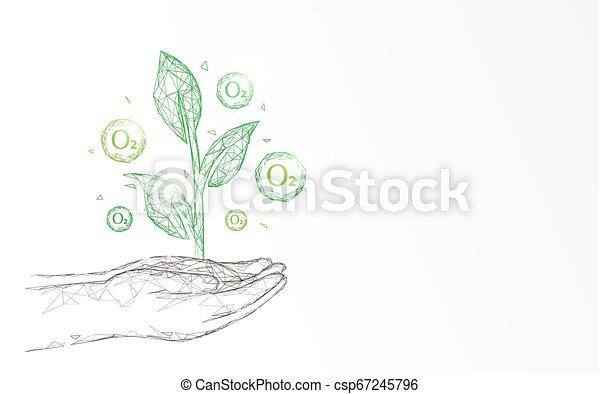 pianta, concetto, ossigeno, forma, punto, linee, mano, fondo., triangoli, ecologia, connettere, rete - csp67245796
