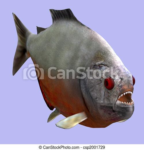 piranha - csp2001729