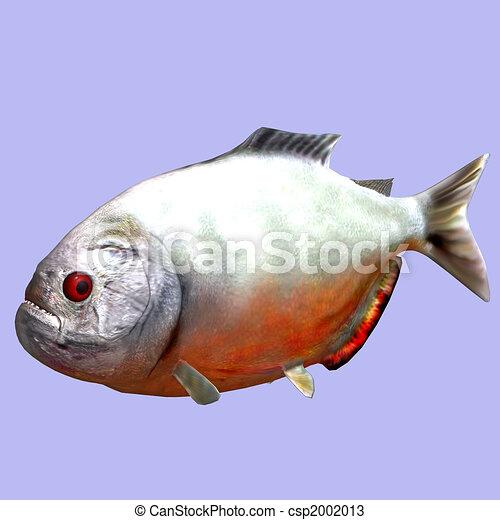 piranha - csp2002013