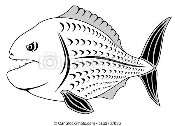 piranha - csp3787836