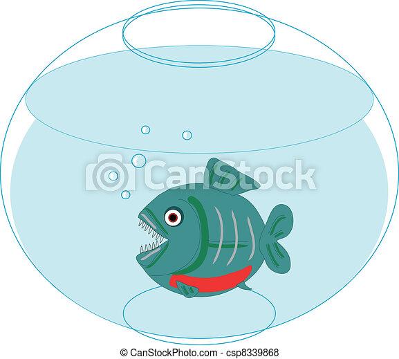 piranha - csp8339868