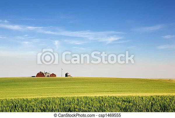 prateria, terreno coltivato - csp1469555