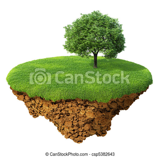 prato, albero - csp5382643