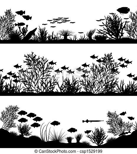 primo piano, corallo - csp1529199