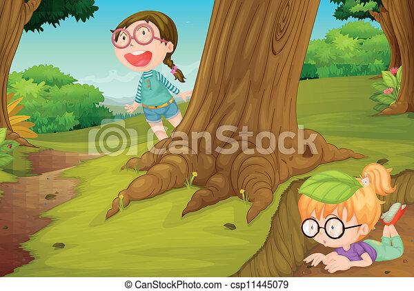 ragazze, gioco, natura - csp11445079