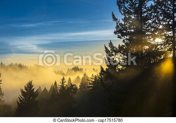 raggi luminosi - csp17515780