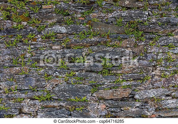 rustico, parete, closeup - csp64716285