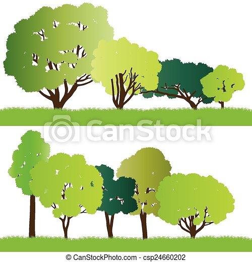 silhouette, foresta, albero - csp24660202