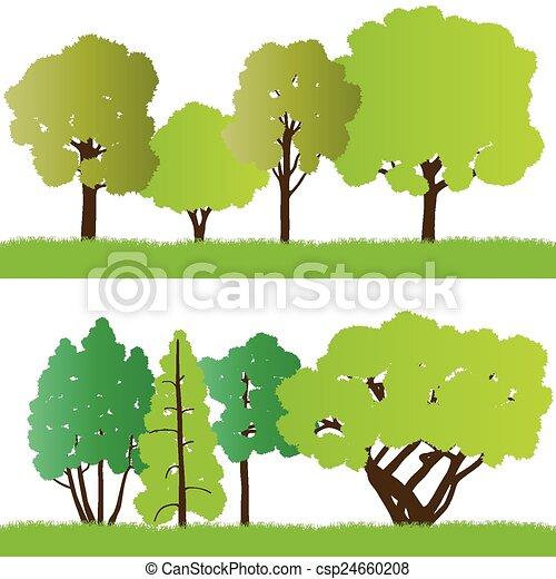 silhouette, foresta, albero - csp24660208