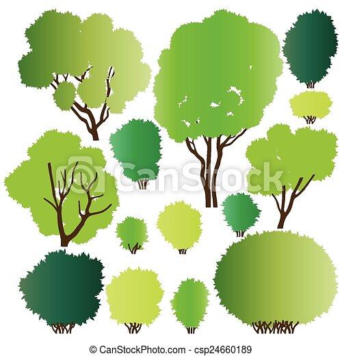 silhouette, foresta, albero - csp24660189