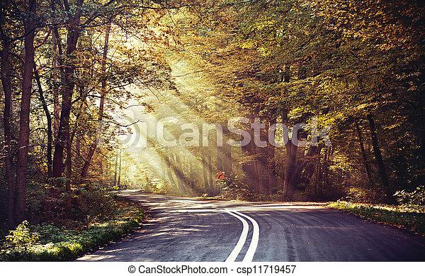 sparare, strada, grande, raggi sole, sopra - csp11719457