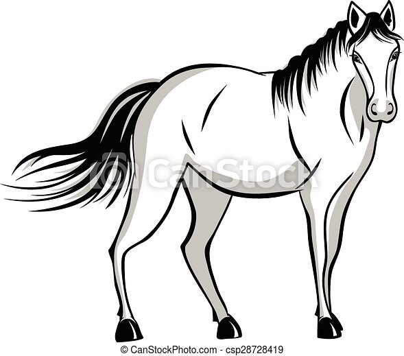 standing, tranquillamente, cavallo - csp28728419