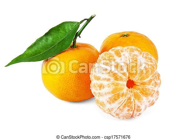 succoso, fresco, mandarini - csp17571676