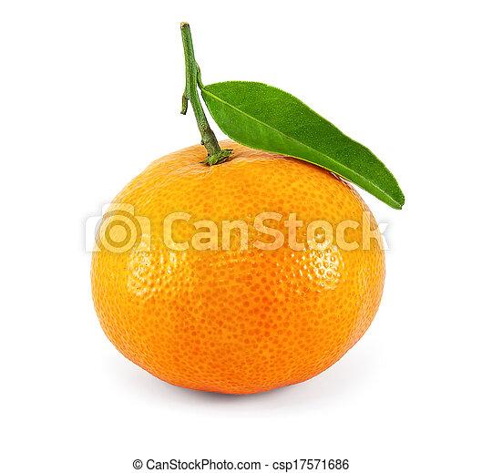 succoso, mandarino, fresco - csp17571686