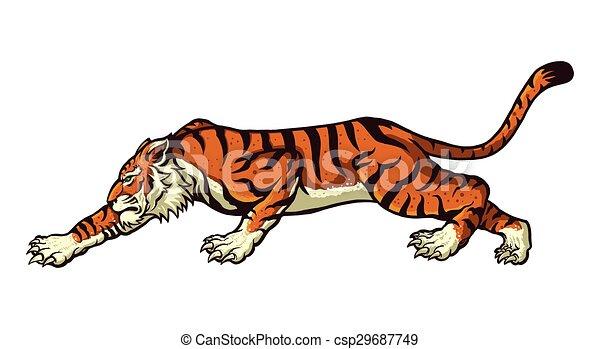 tiger - csp29687749