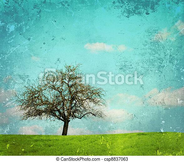 vendemmia, immagine, quercia, paesaggio, albero - csp8837063