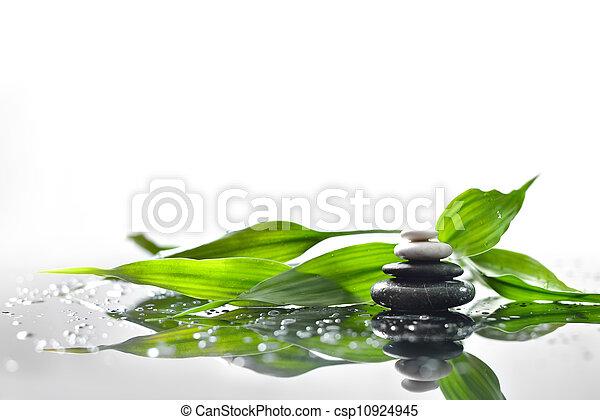 verde, ramoscello, fondo, terme, pietre, bambù - csp10924945