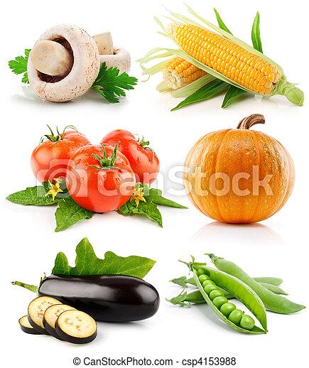 verdura, bianco, set, isolato, frutte - csp4153988