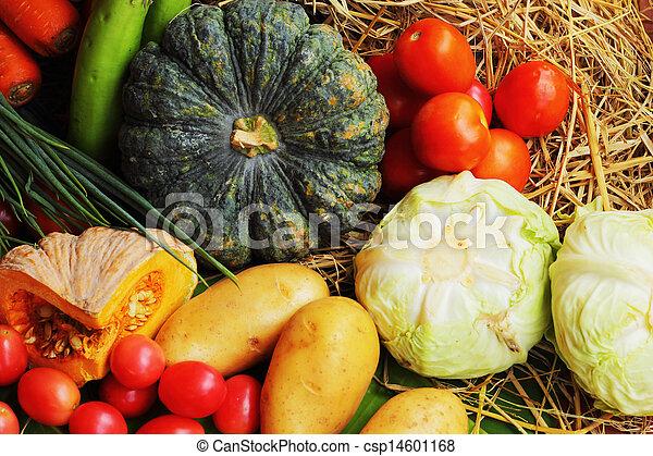 verdura, fresco - csp14601168