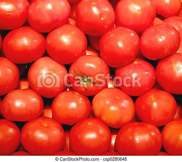 verdura, pomodoro, - - csp0280648