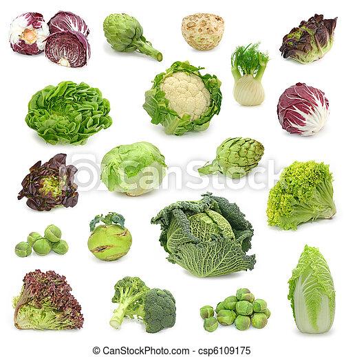 verdura, raccogliere, cavolo, verde - csp6109175