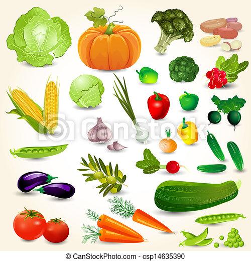 verdure fresche, progetto serie, tuo - csp14635390