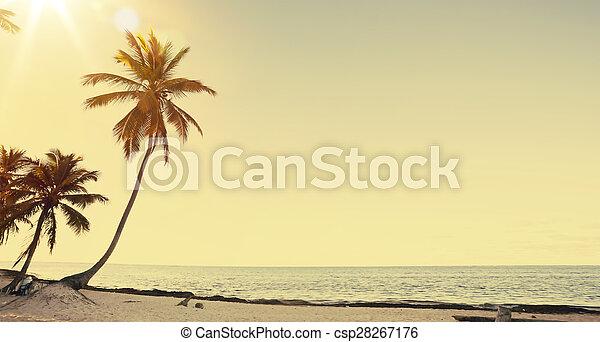 vista, arte, fondo, bello, spiaggia, retro - csp28267176